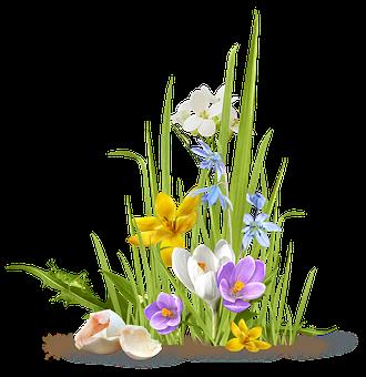 spring-3179327__340
